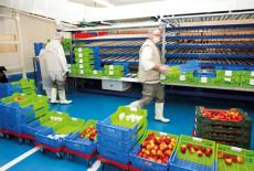 Sodexo : la cuisine centrale de Dreux monte en puissance